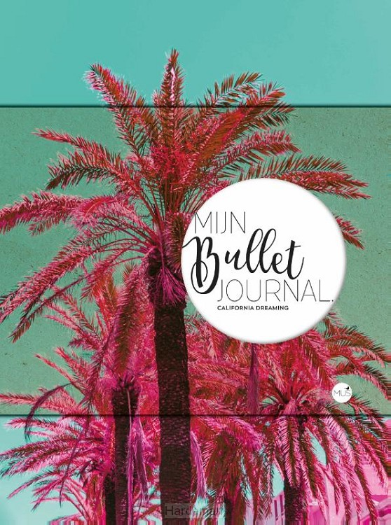 Mijn bullet journal California dreaming